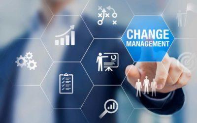 Le management de transition : C'est quoi ?