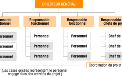Management matriciel : définition, avantages et inconvénients